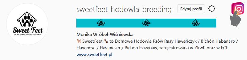 Zaproszenie na profil sweetfeet_hodowla_breeding Instagram